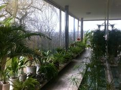 Tugendhat house, Mies van der Rohe