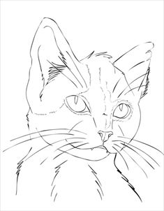 Cat Portrait coloring page from Cats category. Select from 25283 printable craft… - Katzen Cat Outline, Outline Drawings, Cool Art Drawings, Art Drawings Sketches, Animal Sketches, Animal Drawings, Cat Drawing Tutorial, Chat Kawaii, Cat Sketch