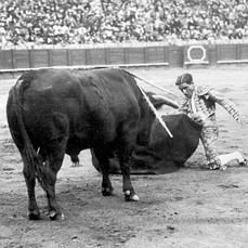 ¿Por qué murió Juan Belmonte?