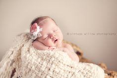 Baby CeCe - Vintage Willow Photography Blog