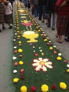 Semana santa sardoal portugal tapetes de flores pinterest portugal - Alfombras portugal ...