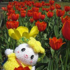 brother_of_kappachan:: ()かっぱちゃんですたかたのゆめちゃんとチューリップかわいいなぁ #あみぐるみ #かぎあみ #たかたのゆめちゃん #スマイル #チューリップ #お花 #ハンドメイド #amigurumi #crochet #cute #smile #tulip #flower #pretty #kawaii #かわいい #ゆめちゃん