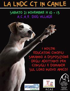 #welcomeincanile - 21/11 evento organizzato dai #volontari di #LegadelCane #Catania
