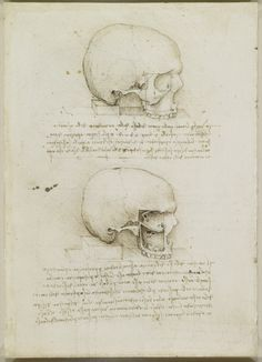 Leonardo da Vinci made anatomical drawings of the human skull in 1489. These sketches, acquired by English King Charles II, are now housed in Britain's Royal Collection in Windsor. Credit: Royal Collection Trust/© Her Majesty Queen Elizabeth II 2014