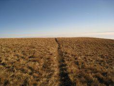 """Take the long way home"" Bielmonte, #Oasi #Zegna, #Italy www.oasizegna.com"
