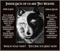 Inside each of us are two wolves.  One is good.  It is joy, peace, love, serenity, humility, kindness, benevolence, empathy, generosity, truth, compassion, and faith.  The other is ego-driven, pulling lower attractor patterns onto us and those around us.  WHICH WOLF WINS? THE ONE YOU FEED MOST!