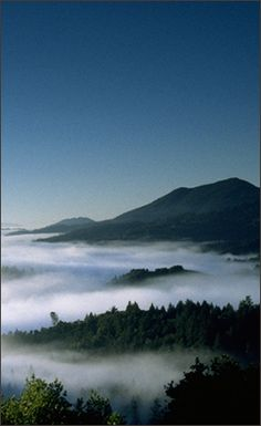 One of Spring Mountain Vineyards favorite shots high about the Napa Valley! Originally pinned from their website.