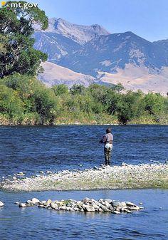 Fly Fishing along the Madison River - Montana