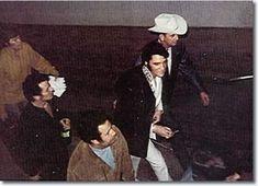 February 28 – Events – Today in Elvis Presley History – Elvis Presley Elvis Cd, Elvis In Concert, Memphis Mafia, Elvis Collectors, Perry Como, Heartbreak Hotel, Showing Livestock, Elvis Presley Photos, Rock N Roll