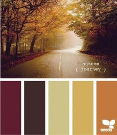 Seeds Design | Color Palette | Autumn by janelle