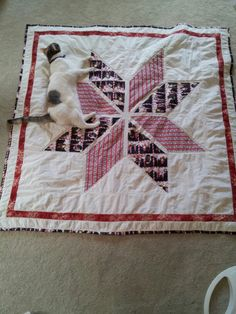 """Winter Star"" - Lucy has loved this quilt even before it was pieced. She would lay on the fabric and dare anyone to remove her! Now wherever the quilt is, you will find her."