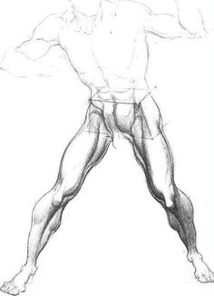 Enjoy a collection of references for Character Design: Legs Anatomy. The collection contains illustrations, sketches, model sheets and tutorials… This Human Anatomy For Artists, Human Anatomy Drawing, Human Figure Drawing, Figure Drawing Reference, Anatomy Reference, Anatomy Sketch, Leg Anatomy, Anatomy Poses, Anatomy Study
