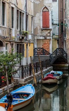 """When you say """"the back streets"""" in Venice, it has a whole other meaning. - 5 days in Venice"""