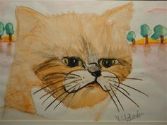Kattebilleder - www.123hjemmeside.dk/MelitasMenageri1