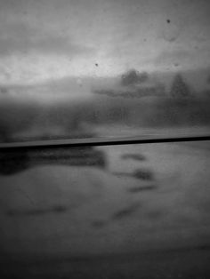 photo Daniela Capellini
