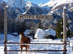 Peter's ranch, Grächen, Wallis