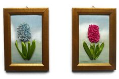 fiber art embroidery ribbon flowers picture wall by natynatyva Hand Embroidery Tutorial, Ribbon Embroidery, Embroidery Patterns, Hyacinth Flowers, Satin Flowers, Picture Wall, Picture Frames, Satin Stitch, Flower Pictures