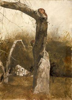 agildedpavlova:  Andrew Wyeth - Early Spring