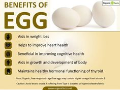 Eggs rich in protein offer many benefits such as weight loss, healthy heart, and lower risk of cancer. Eggs also help to increase cognitive function, & detoxify the body. Egg White Benefits, Health Benefits Of Eggs, Eating Eggs, Coffee Benefits, Rich In Protein, Stubborn Fat, Weight Loss Help, Healing Herbs, Healthier You