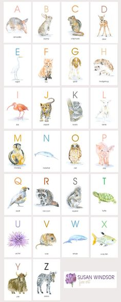Animals alphabet (cards) http://www.siamtrick.com Watercolor Animal Flash Cards Set by Susan Windsor