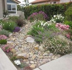 A well proportioned ratio of rocks to other drought tolerant plants gives more depth and curb appeal to a lawn than just a plain sheet of grass.