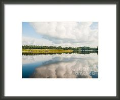"Lakeside Morning Scenery by Ismo Raisanen. The watermark (""Fine Art America"") doesn't appear in the print you buy. Photography Website, Macro Photography, Fine Art Photography, Art Prints For Sale, Artist Names, Artist At Work, Fine Art America, Scenery, My Arts"