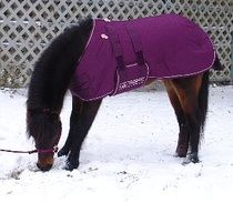 Miniature Horse and Pony Waterproof Roustabout Blanket-www.ozarkcanada.com