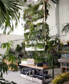 Vertical gardens Try a new vertical garden in your office. See www.greendesign,com.au