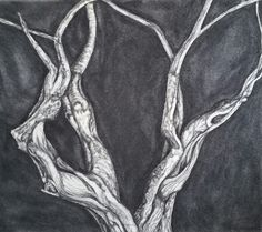 Original charcoal drawing by Rachel Lane. www.rachellaneart.com