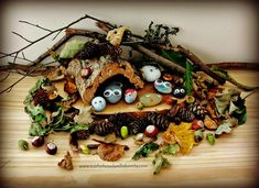 Forest School Fun: Transform pebbles into Pebble Pets & create a seasonal habitat for them