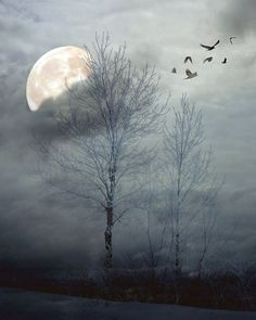 Dreamy blue clouds, moon and beating wings