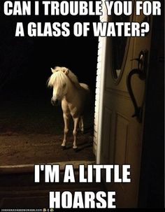 I'm a little hoarse.