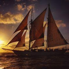 #SEASemester #studyabroad #sailing #westward #tbt