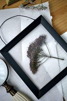 Cómo hacer fácilmente marcos para cuadros transparente flores hojas