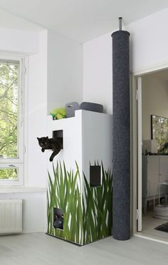 Cat's Corner