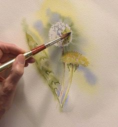 Wild Flower in Watercolor THIS IS ALSO A 60 MIN. VIDEO SHOWING NEGATIVE…