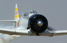 michell169: A6M Zero