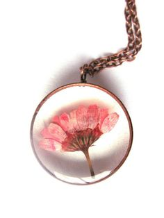 Pink Daisy Chrysanthemum Resin Pendant Necklace - Real daisy in open back copper pipe bezel, Pressed Flower Jewelry - Resin Jewelry.