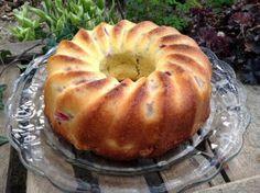 Rhabarbertopfkuchen mit Buttermilch- ein Gedi cht