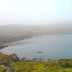 Lake muskry