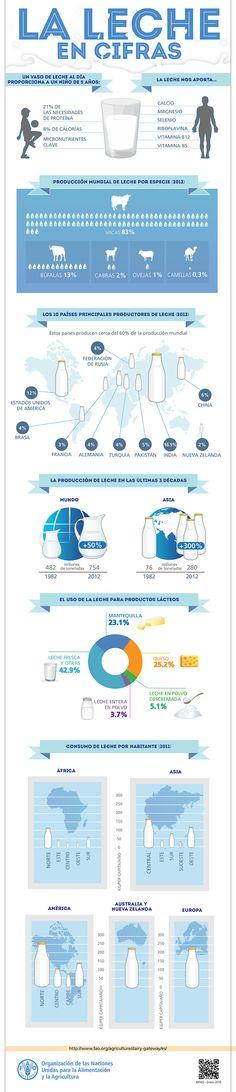 ¡La leche en cifras! ¿Sabías que Un vaso de leche proporciona a un niño de 5 años el 21 % de las necesidades diarias de proteínas, el 8 % de las calorías, además de micronutrientes clave?