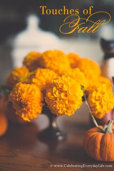 A few touches of Fall   Celebrating everyday life with Jennifer Carroll