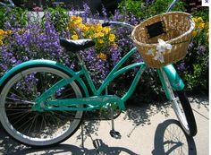 beach cruiser with a basket - Google Search
