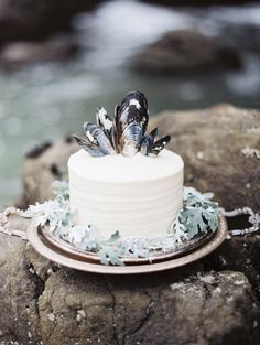 The mussels! My partner and I do a lot of fishing and collecting seafood so this is such a sweet memory for us. For more Fiji wedding inspiration follow this board.