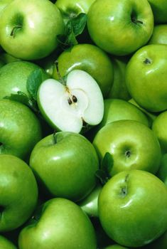 green apples only🍎 Green Wallpaper, Apple Wallpaper, Fresh Green, Bright Green, Apple Plant, Agriculture Photos, Ganesh Photo, Apple Theme, Fruit Photography