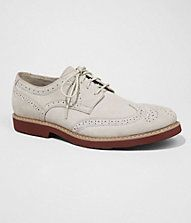 Express SUEDE WINGTIP OXFORD