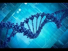 Mankind's Creation from Alien Genetic Engineering Full Length Documentary