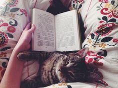 #books #cats