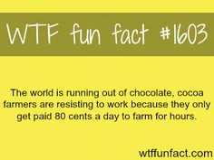 The world is ruining out of chocolate! -WTF fun facts pay the farmers millions, they deserve it!