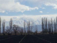 Cordillera de los Andes, Mendoza